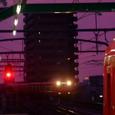 赤紫の夕闇を灯す光